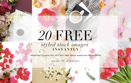 black text reads 20 free styled stock image instantly against a backdrop of eight image squares containing red florals and other miscellaneous items