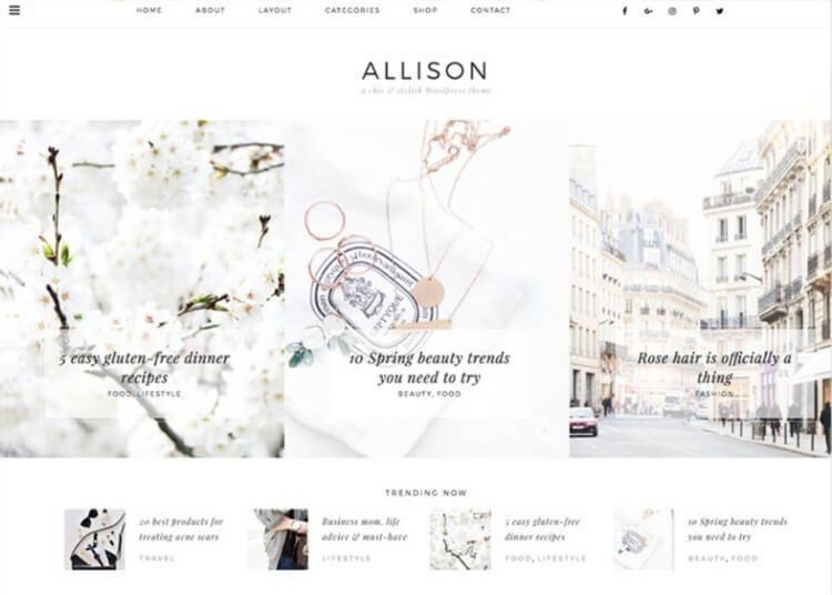 allison feminine wordpress theme from creative market