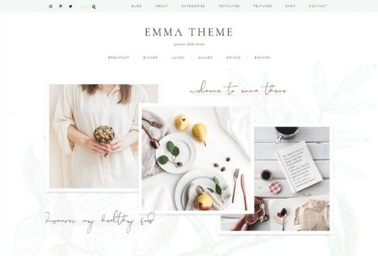 emma wordpress theme from creative market
